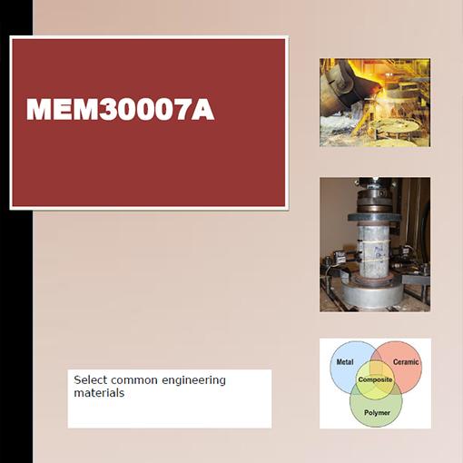 MEM30007A